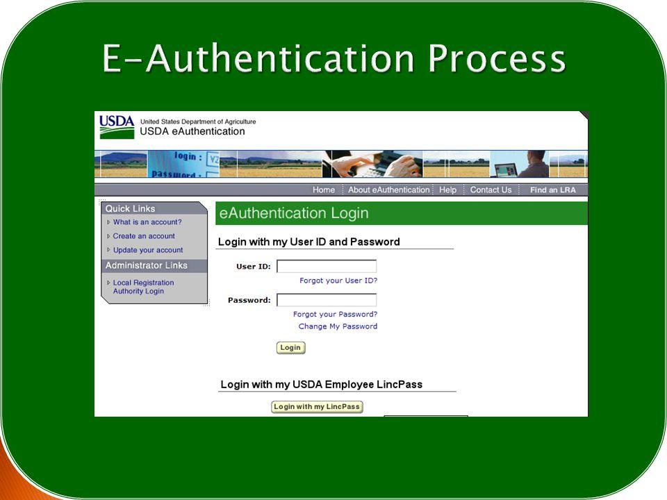 E-Authentication Process