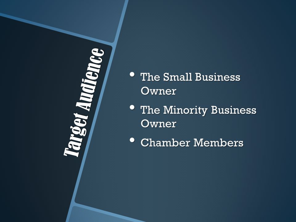 Target Audience The Small Business Owner The Small Business Owner The Minority Business Owner The Minority Business Owner Chamber Members Chamber Members