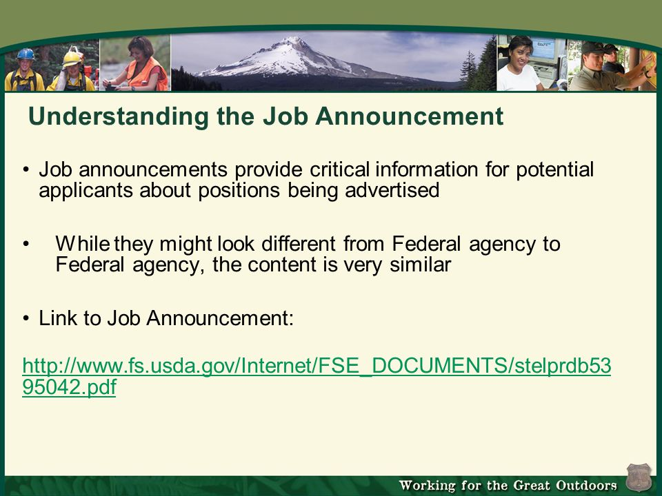 Understanding the Job Announcement Job announcements provide critical information for potential applicants about positions being advertised While they might look different from Federal agency to Federal agency, the content is very similar Link to Job Announcement: http://www.fs.usda.gov/Internet/FSE_DOCUMENTS/stelprdb53 95042.pdf http://www.fs.usda.gov/Internet/FSE_DOCUMENTS/stelprdb53 95042.pdf