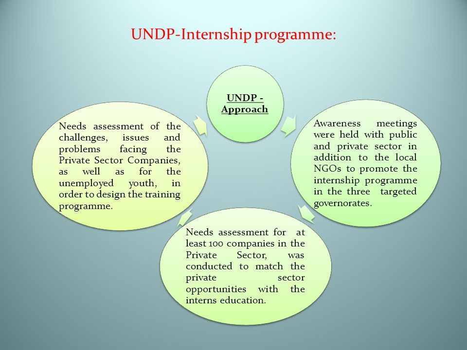 UNDP-Internship programme: UNDP - Approach Awareness meetings were held with public and private sector in addition to the local NGOs to promote the in