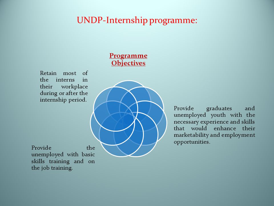 UNDP-Internship programme: Programme Objectives Provide graduates and unemployed youth with the necessary experience and skills that would enhance their marketability and employment opportunities.