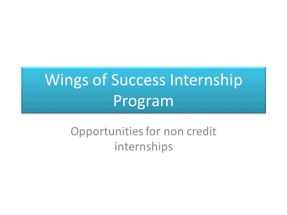 Wings of Success Internship Program Opportunities for non credit internships