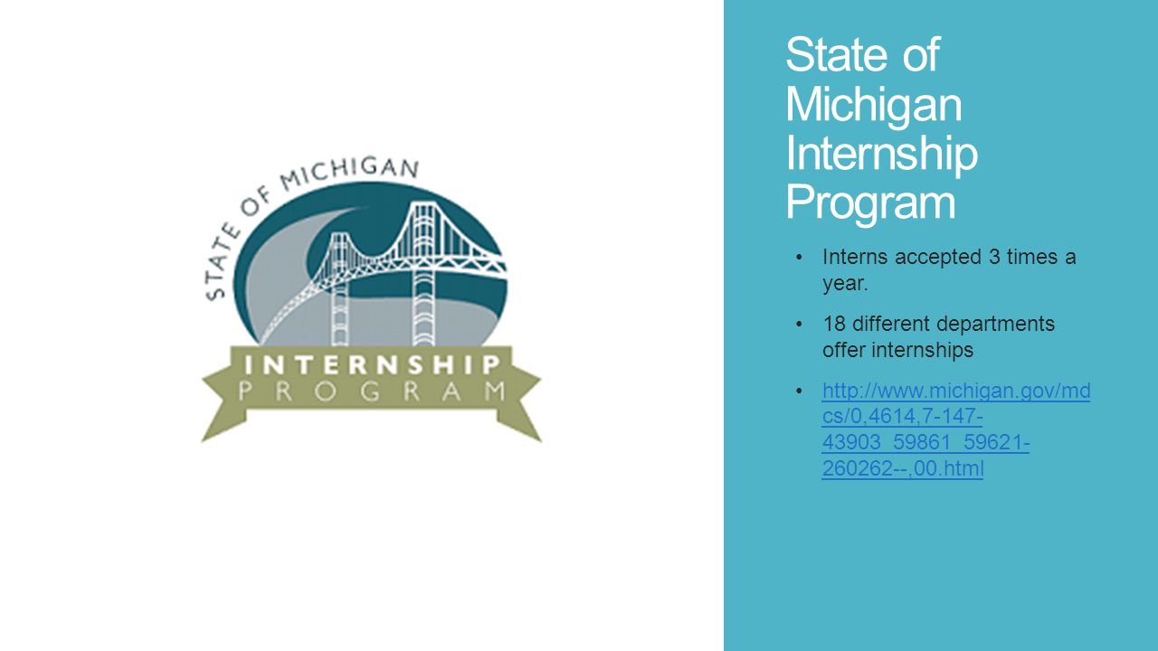 State of Michigan Internship Program Interns accepted 3 times a year.