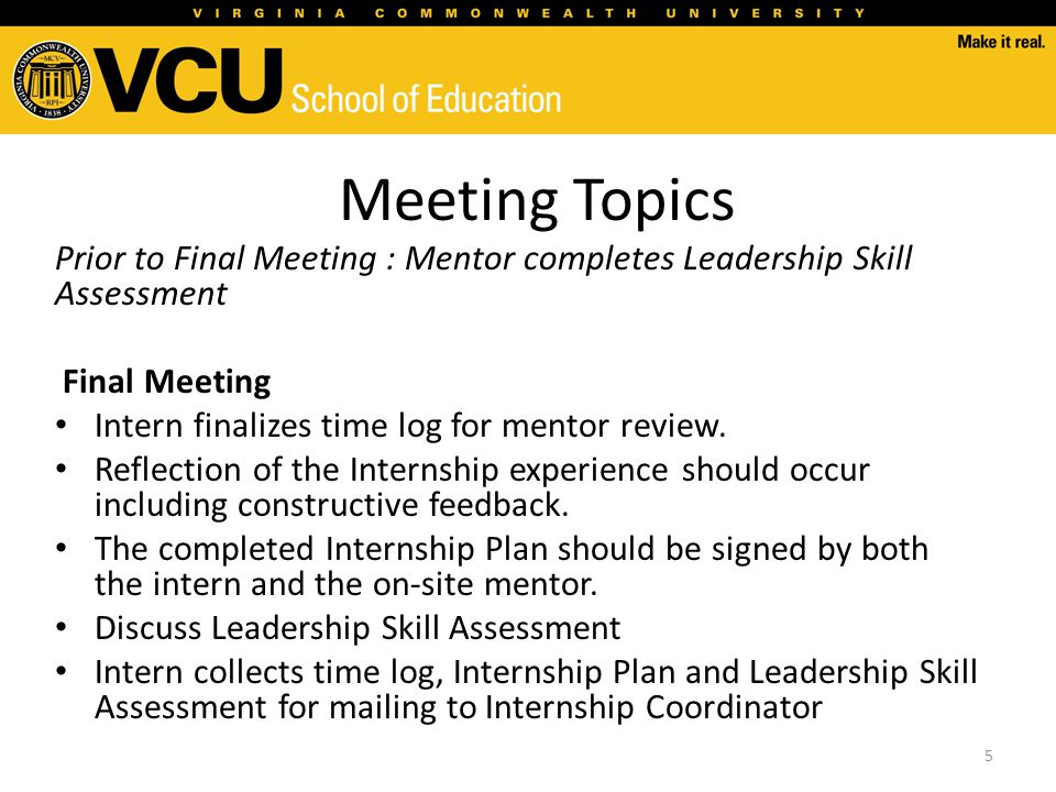 Meeting Topics Prior to Final Meeting : Mentor completes Leadership Skill Assessment Final Meeting Intern finalizes time log for mentor review. Reflec