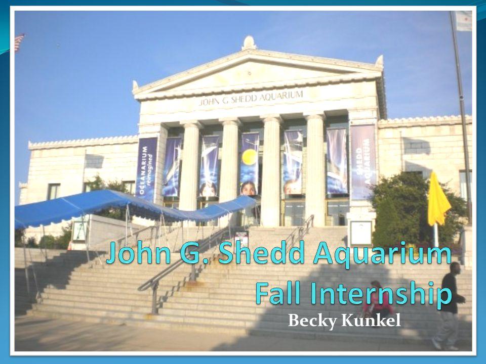 Becky Kunkel