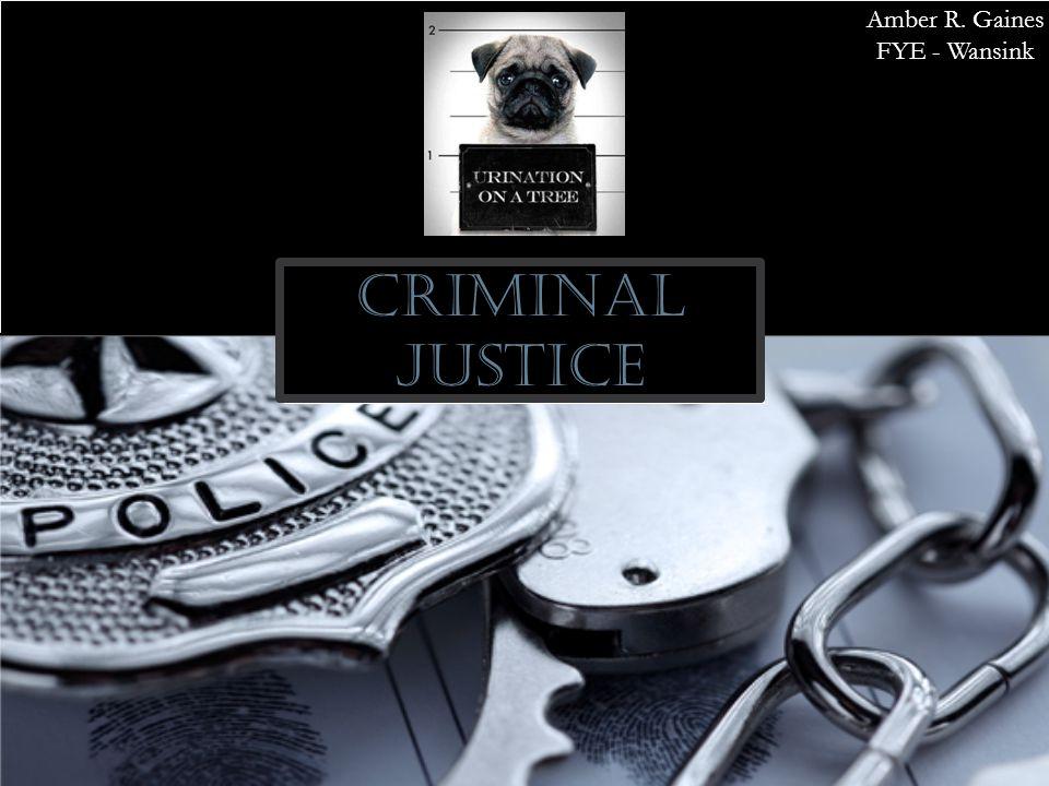 Criminal Justice Amber R. Gaines FYE - Wansink
