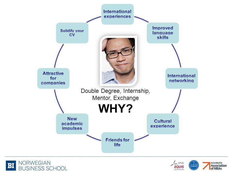 Double Degree, Internship, Mentor, Exchange WHY?