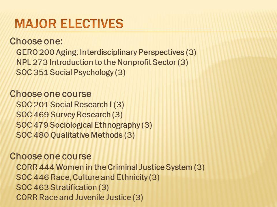 Juvenile Delinquency (Corr 255) Criminology (Corr 442, Soc 442) Social Deviance (Soc 441) Family Violence (Soc 409) Soc.