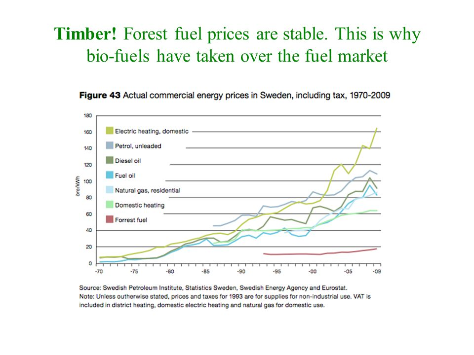 Timber! Forest fuel prices are stable. This is why bio-fuels have taken over the fuel market