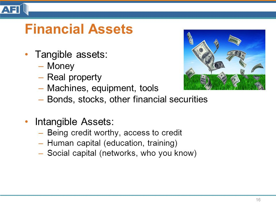 Financial Assets Tangible assets: –Money –Real property –Machines, equipment, tools –Bonds, stocks, other financial securities Intangible Assets: –Being credit worthy, access to credit –Human capital (education, training) –Social capital (networks, who you know) 16