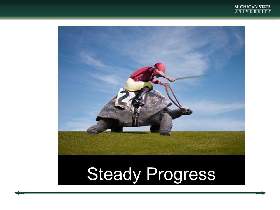 Steady Progress