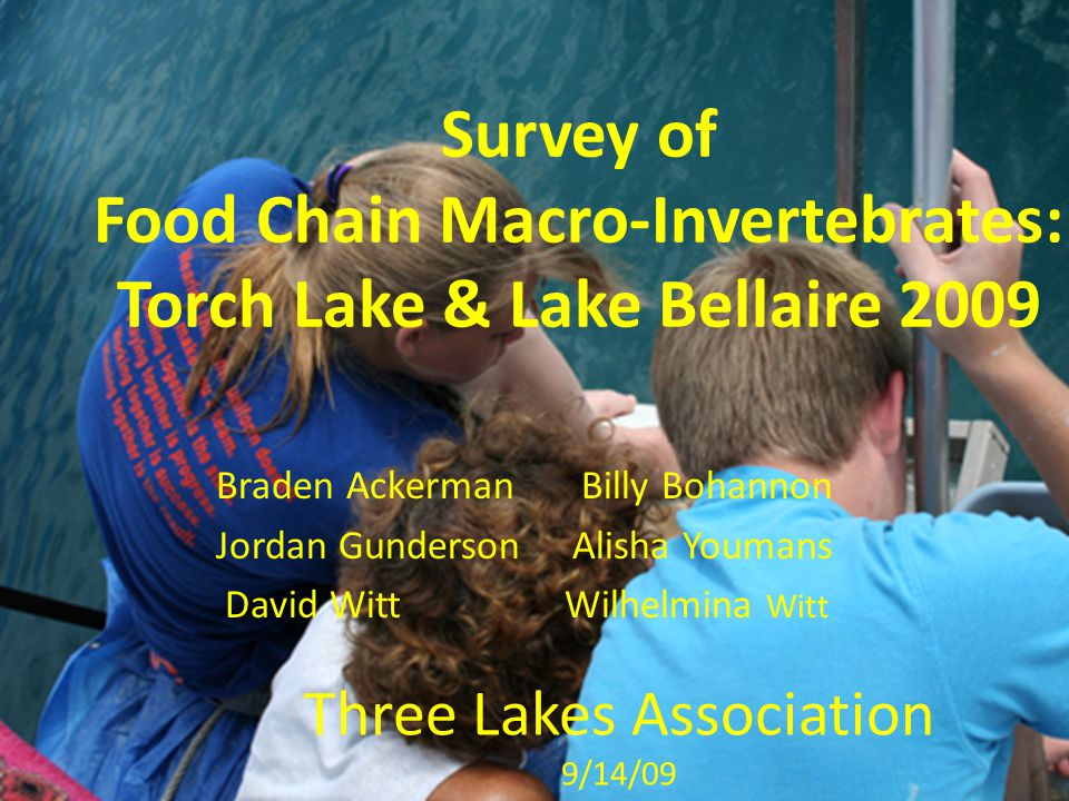 Survey of Food Chain Macro-Invertebrates: Torch Lake & Lake Bellaire 2009 Braden Ackerman Billy Bohannon Jordan Gunderson Alisha Youmans David Witt Wilhelmina Witt Three Lakes Association 9/14/09