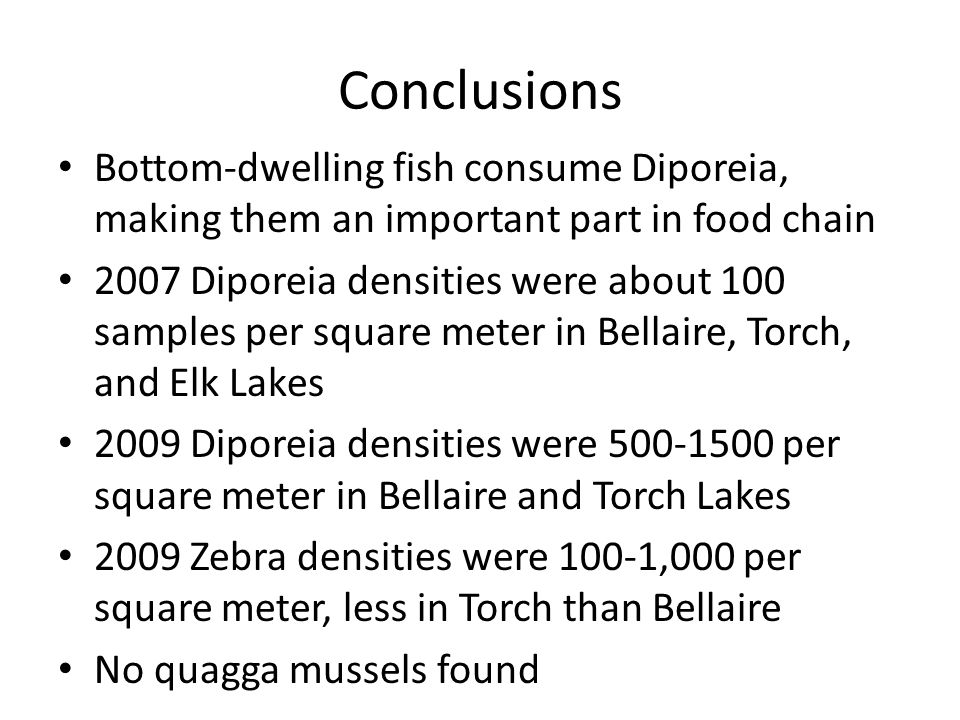 Conclusions Bottom-dwelling fish consume Diporeia, making them an important part in food chain 2007 Diporeia densities were about 100 samples per square meter in Bellaire, Torch, and Elk Lakes 2009 Diporeia densities were 500-1500 per square meter in Bellaire and Torch Lakes 2009 Zebra densities were 100-1,000 per square meter, less in Torch than Bellaire No quagga mussels found