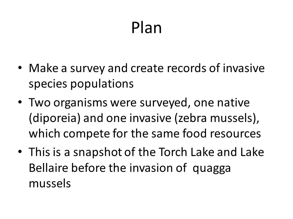 Plan Make a survey and create records of invasive species populations Two organisms were surveyed, one native (diporeia) and one invasive (zebra mussels), which compete for the same food resources This is a snapshot of the Torch Lake and Lake Bellaire before the invasion of quagga mussels