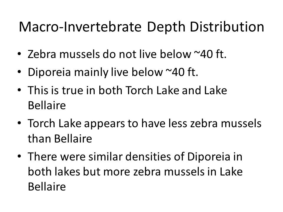 Macro-Invertebrate Depth Distribution Zebra mussels do not live below ~40 ft.