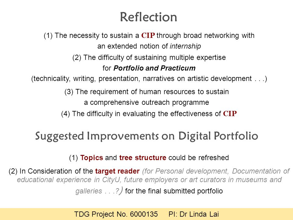 Reflection (1) The necessity to sustain a CIP through broad networking with an extended notion of internship (2) The difficulty of sustaining multiple