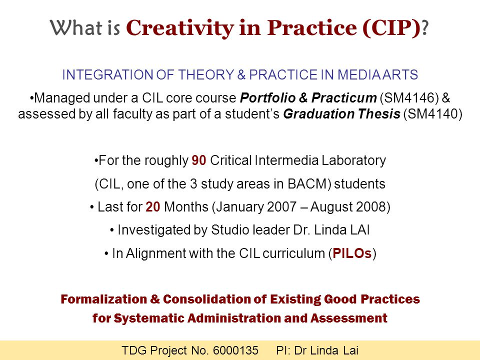 What is Creativity in Practice (CIP) .