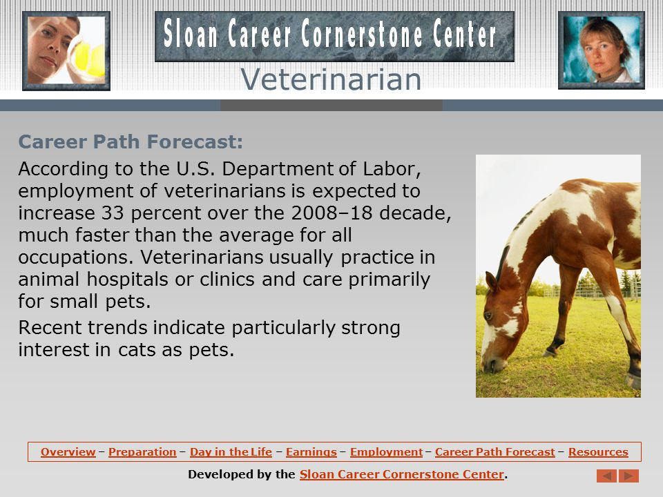 Employment: Veterinarians hold about 59,700 jobs in the U.S.