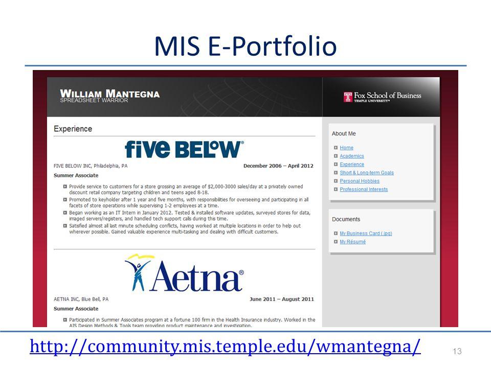 MIS E-Portfolio http://community.mis.temple.edu/wmantegna/ 13