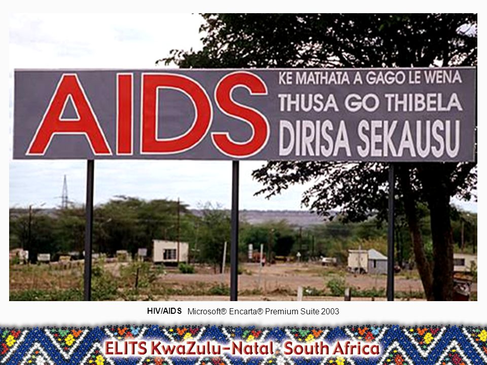 HIV/AIDS Microsoft® Encarta® Premium Suite 2003