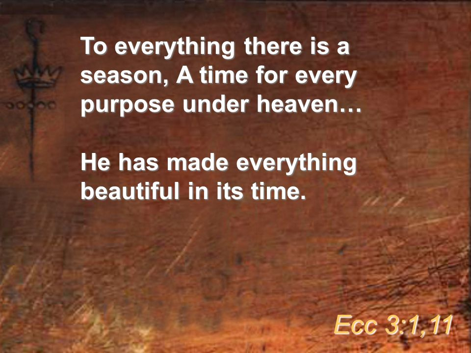To everything there is a season, A time for every purpose under heaven… He has made everything beautiful in its time.
