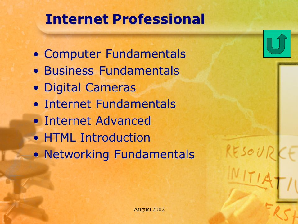 August 2002 Internet Professional Computer FundamentalsComputer Fundamentals Business FundamentalsBusiness Fundamentals Digital CamerasDigital Cameras