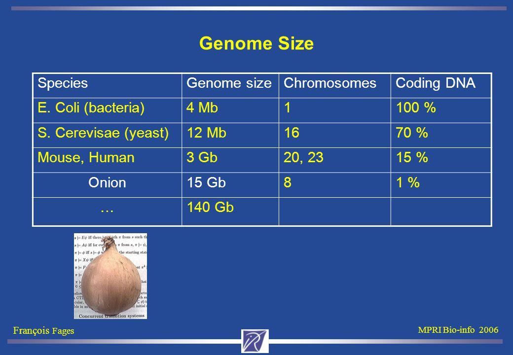 François Fages MPRI Bio-info 2006 Genome Size SpeciesGenome sizeChromosomesCoding DNA E.