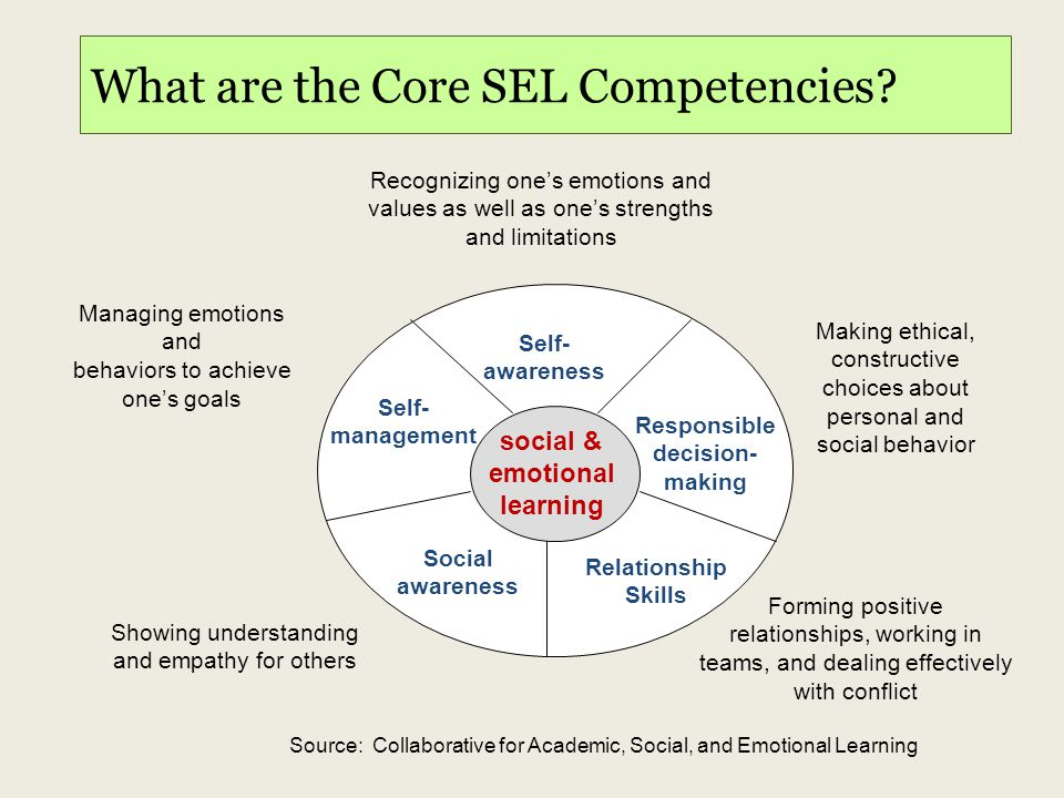How Do Students Acquire SEL Skills.