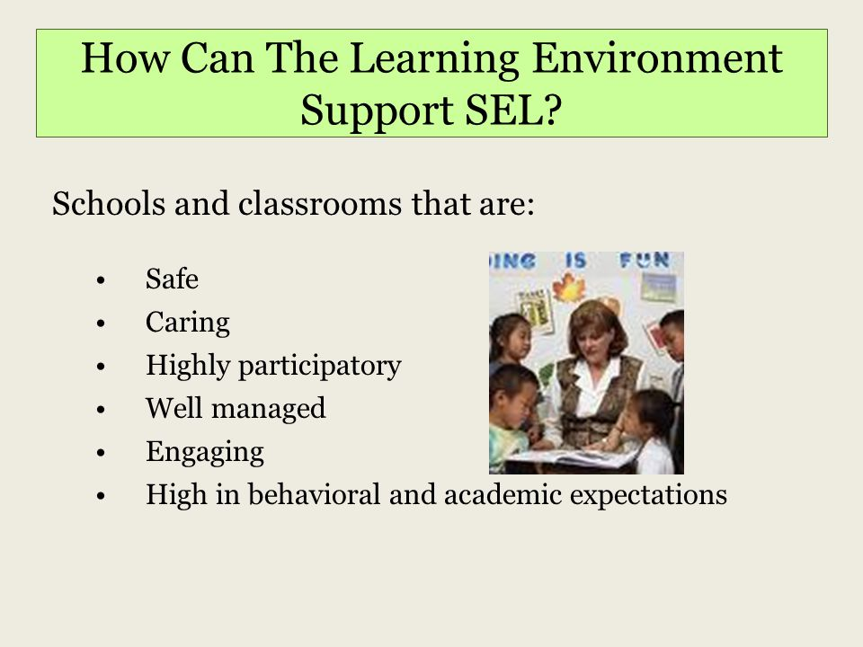 Why Should Schools Address SEL.