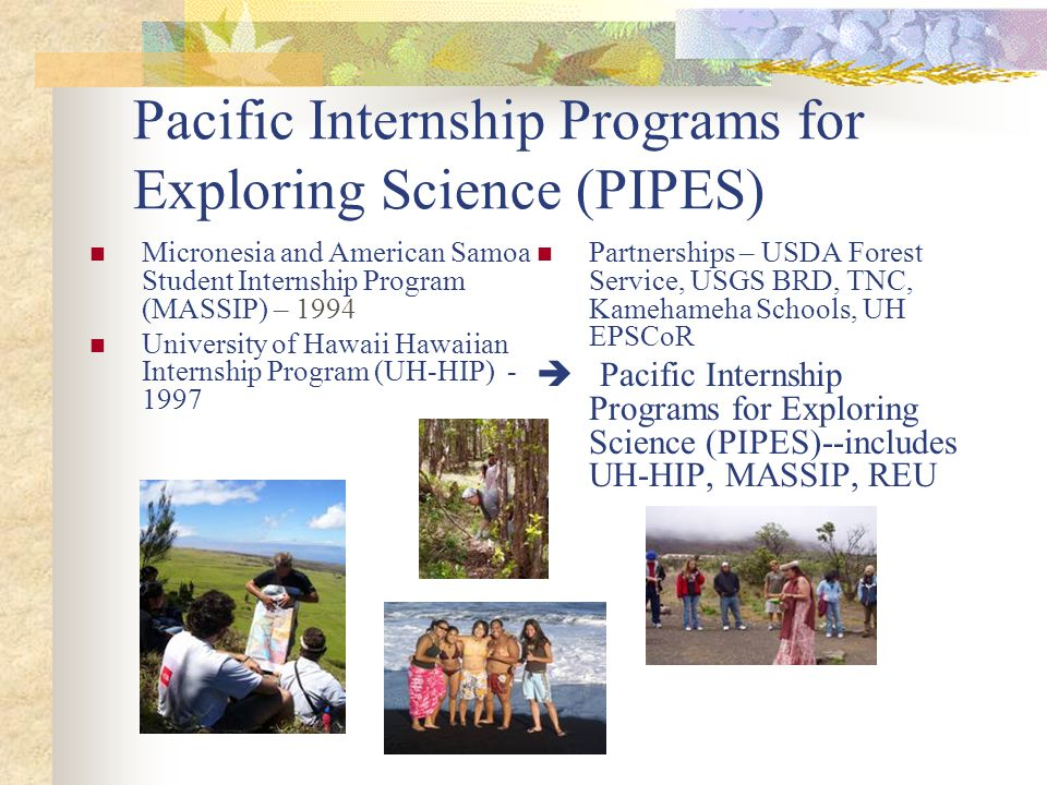 Pacific Internship Programs for Exploring Science (PIPES) Micronesia and American Samoa Student Internship Program (MASSIP) – 1994 University of Hawaii Hawaiian Internship Program (UH-HIP) - 1997 Partnerships – USDA Forest Service, USGS BRD, TNC, Kamehameha Schools, UH EPSCoR  Pacific Internship Programs for Exploring Science (PIPES)--includes UH-HIP, MASSIP, REU