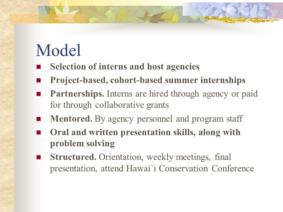 Model Selection of interns and host agencies Project-based, cohort-based summer internships Partnerships.