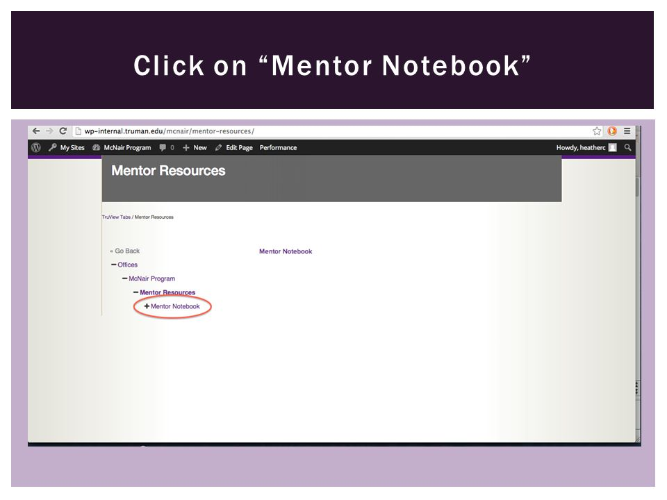 "Click on ""Mentor Notebook"""