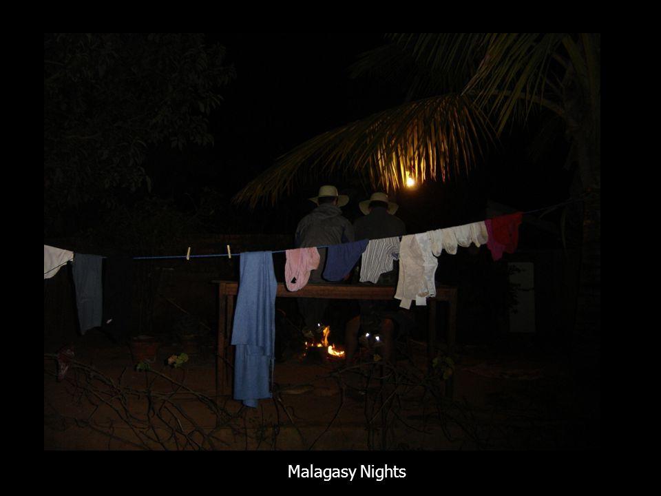 Malagasy Nights
