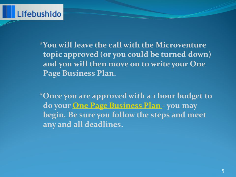 *You will leave the call with the Microventure topic approved (or you could be turned down) and you will then move on to write your One Page Business Plan.