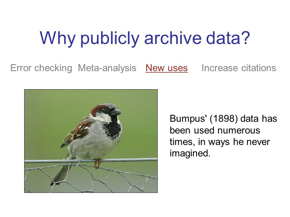 Why publicly archive data? Error checking Meta-analysis New uses Increase citations Bumpus' (1898) data has been used numerous times, in ways he never