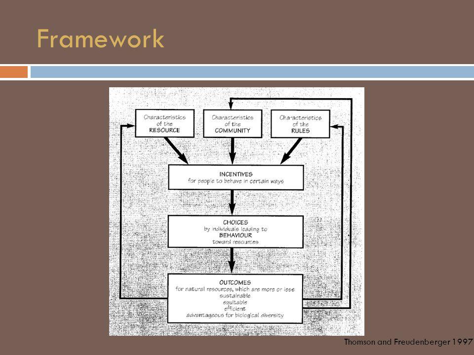 Framework Thomson and Freudenberger 1997