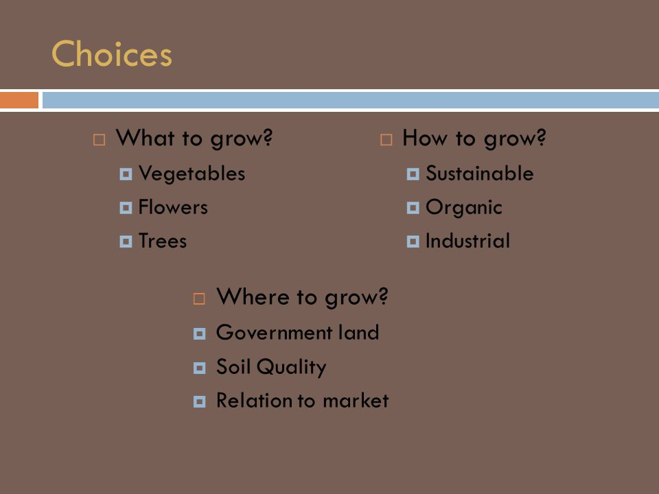 Choices  Where to grow?  Government land  Soil Quality  Relation to market
