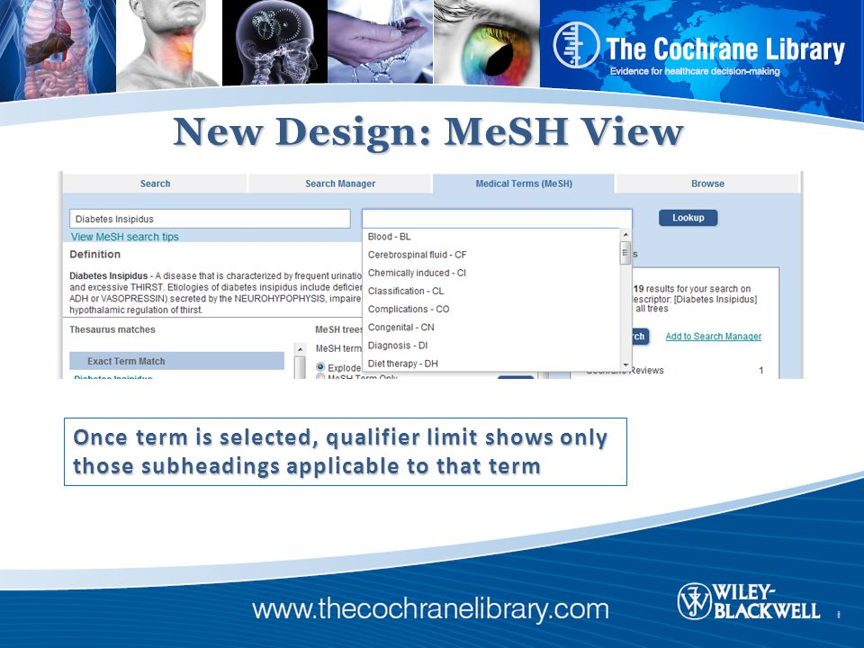 New Design: MeSH View Once term is selected, qualifier limit shows only those subheadings applicable to that term