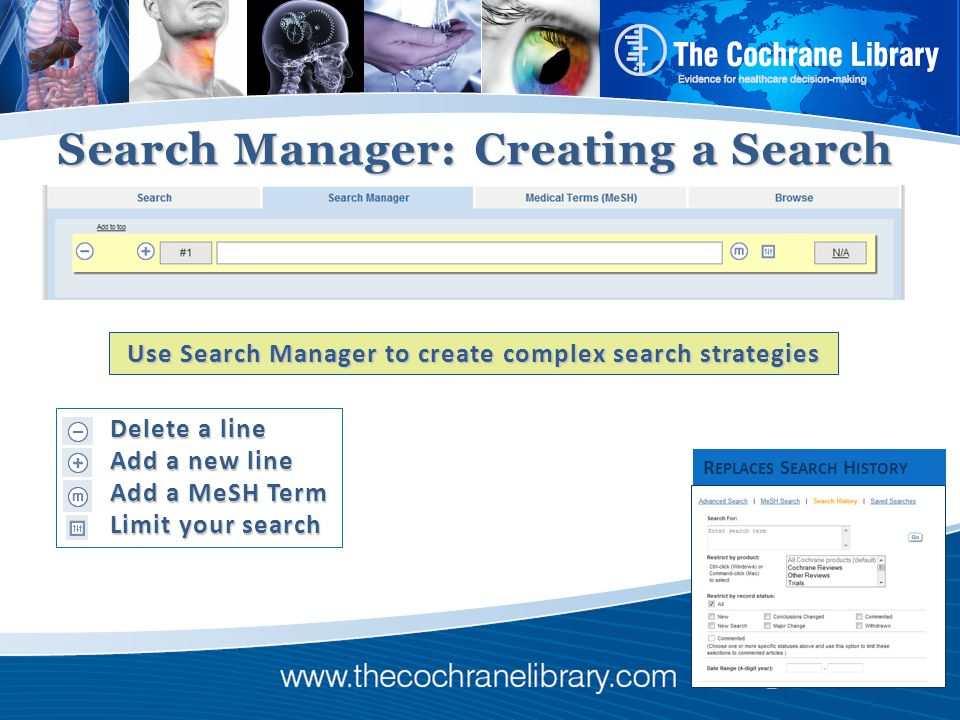 Search Manager: Creating a Search Delete a line Delete a line Add a new line Add a new line Add a MeSH Term Add a MeSH Term Limit your search Limit your search R EPLACES S EARCH H ISTORY Use Search Manager to create complex search strategies
