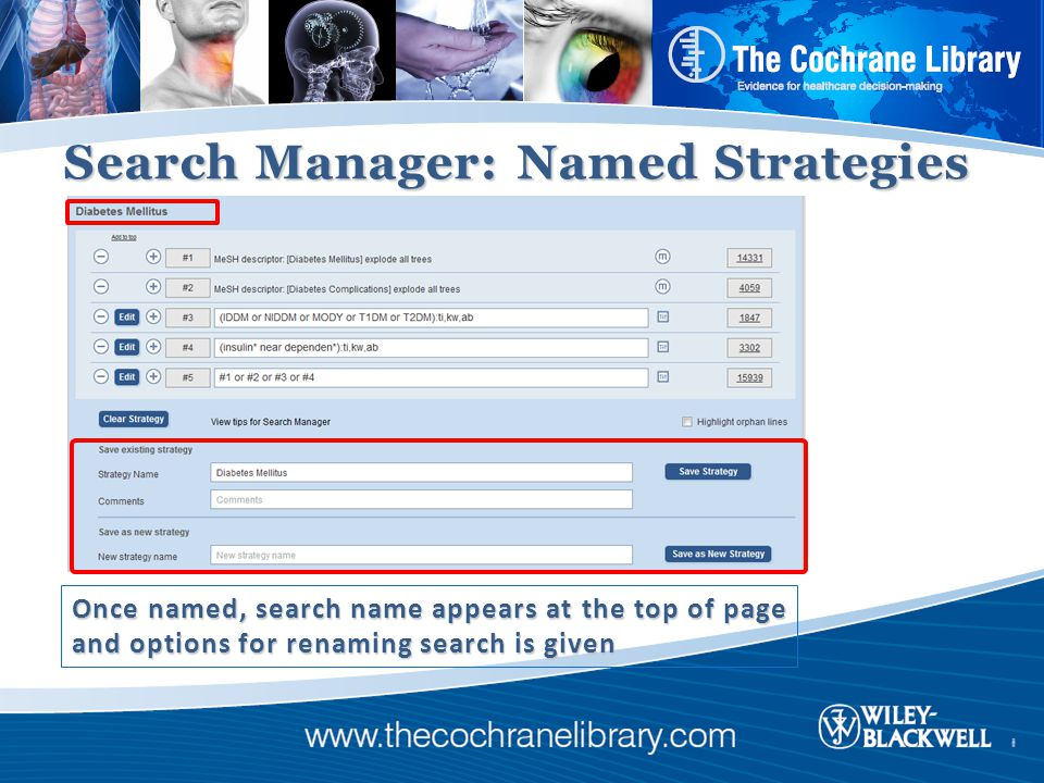 Search Manager: Named Strategies Once named, search name appears at the top of page and options for renaming search is given