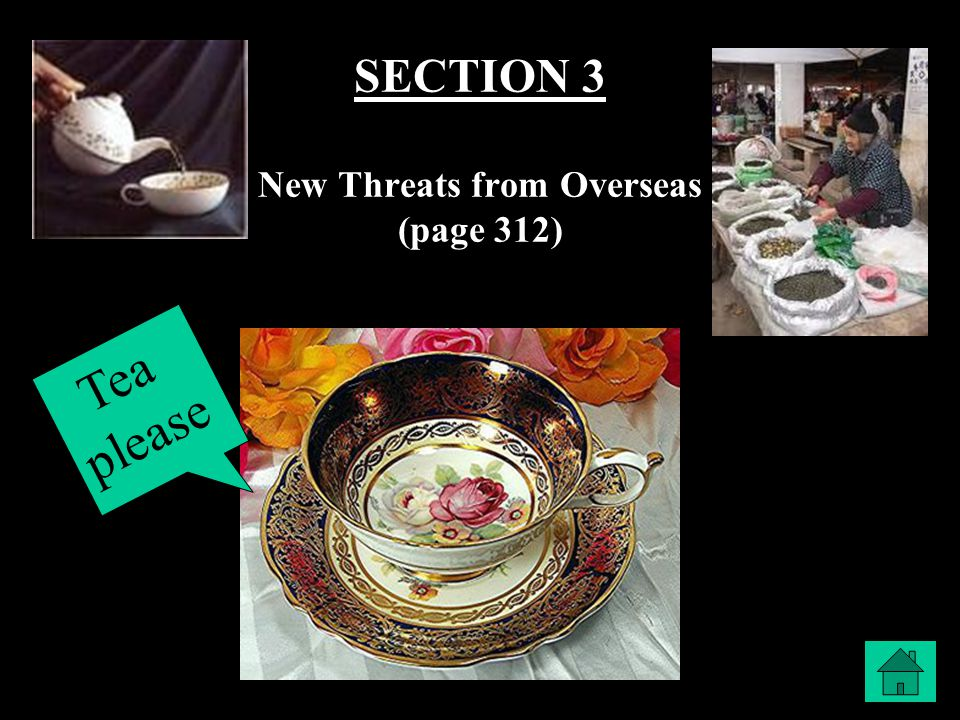 SECTION 3 New Threats from Overseas (page 312) Tea please