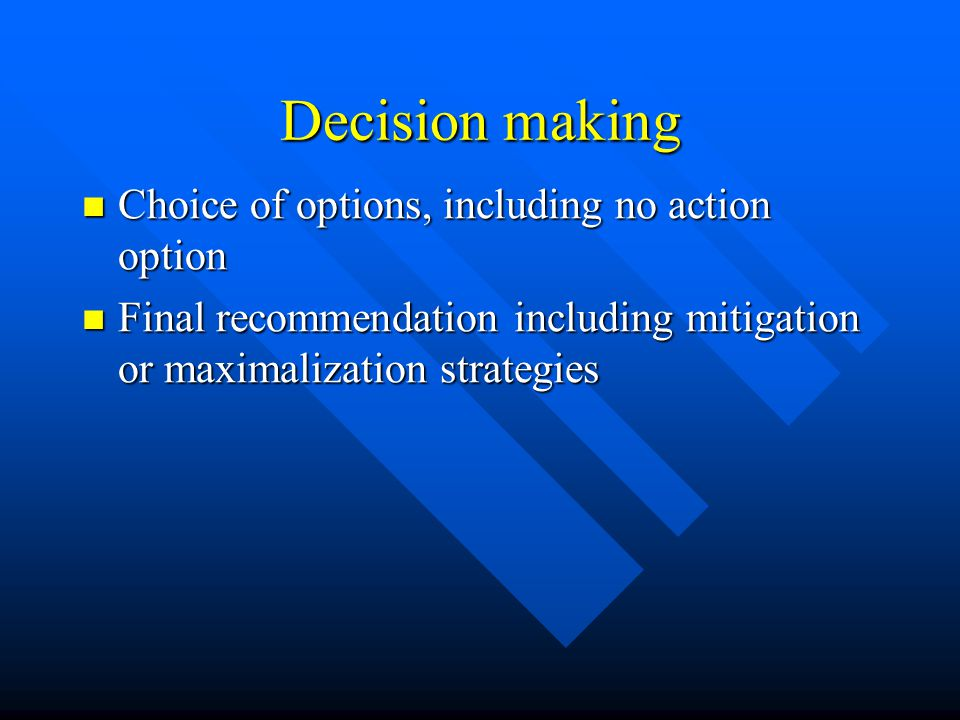 Decision making Choice of options, including no action option Choice of options, including no action option Final recommendation including mitigation or maximalization strategies Final recommendation including mitigation or maximalization strategies