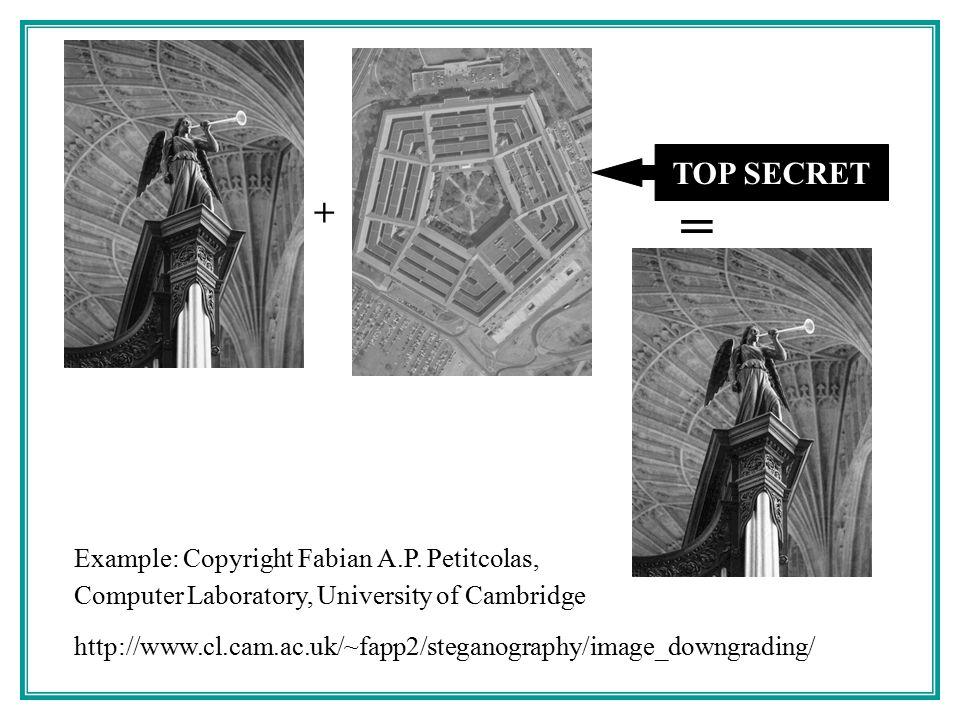Sending a Steganographic Message