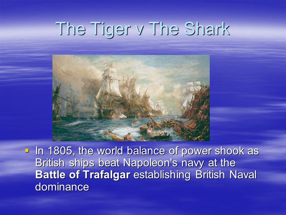 The Tiger v The Shark  At the same time, Napoleon defeated the allied Russo- Austrian forces at Austerlitz that same year.