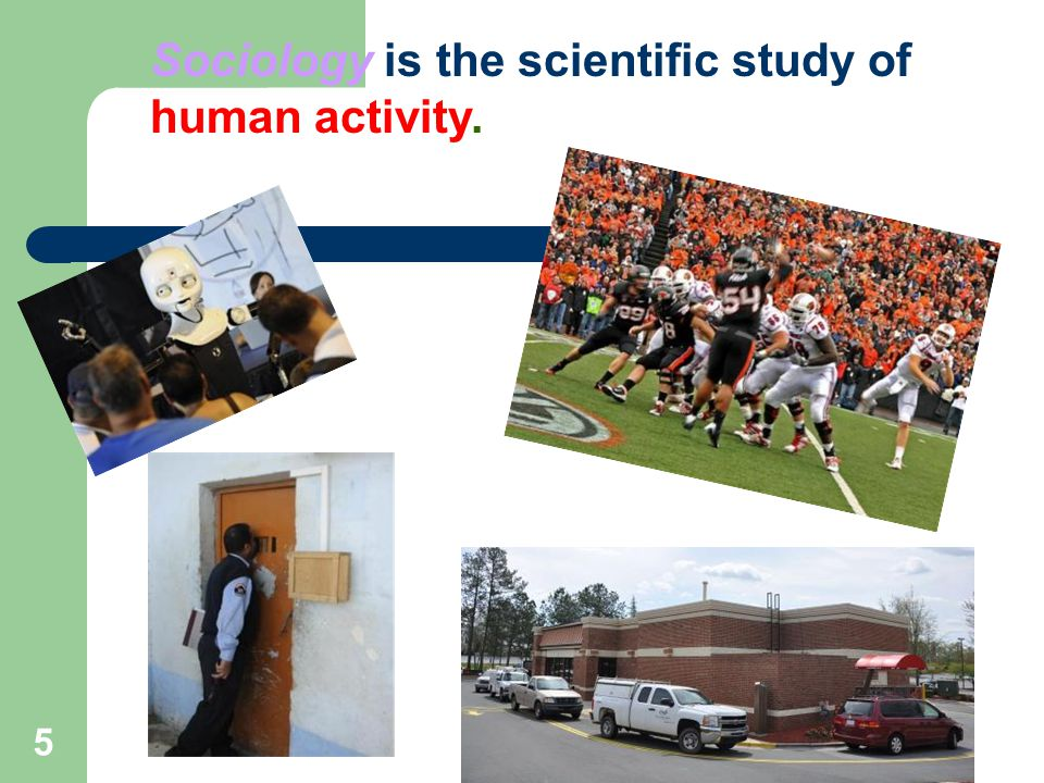 5 Sociology is the scientific study of human activity.