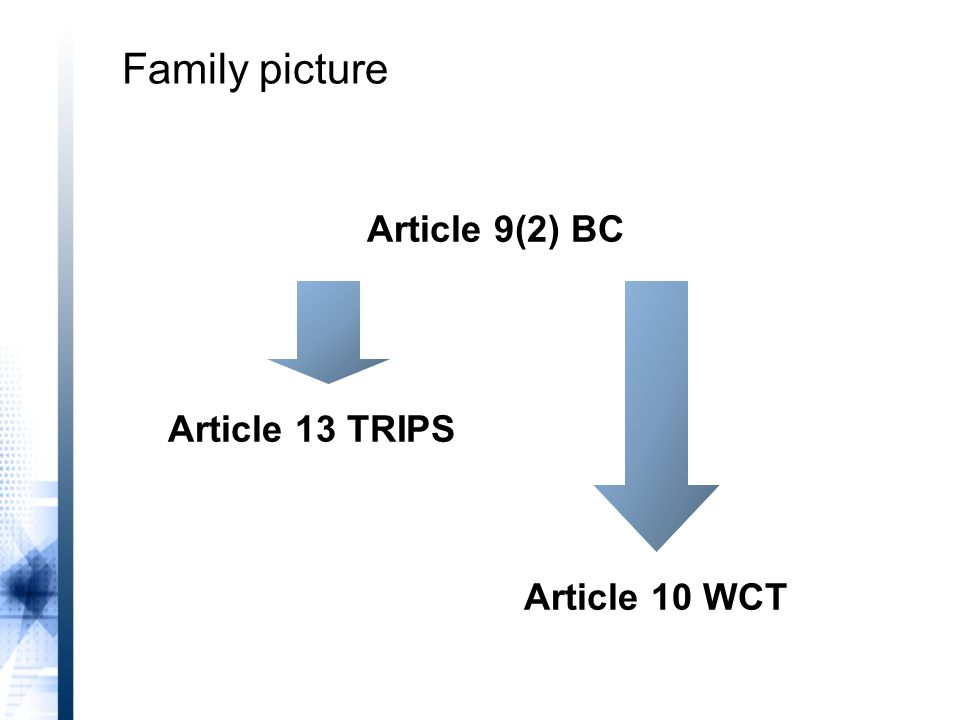 Article 9(2) BC Article 13 TRIPS Article 10 WCT Family picture