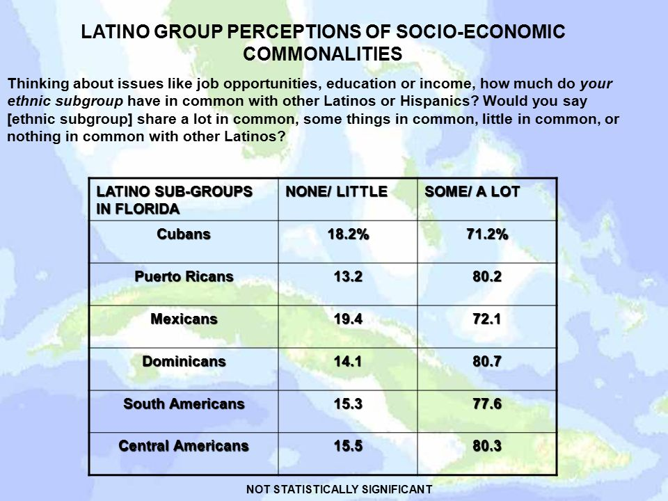 LATINO GROUP PERCEPTIONS OF SOCIO-ECONOMIC COMMONALITIES Thinking about issues like job opportunities, education or income, how much do your ethnic subgroup have in common with other Latinos or Hispanics.
