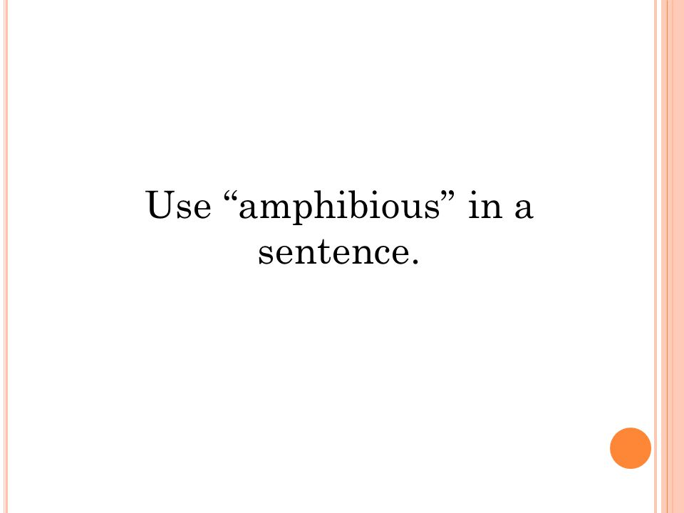 Use amphibious in a sentence.