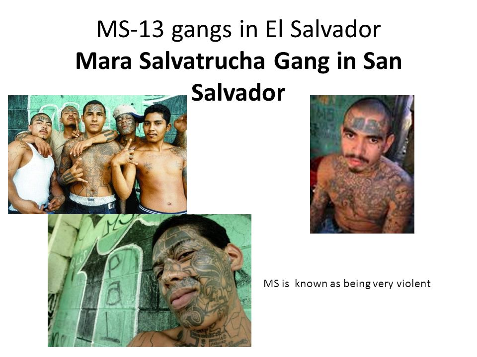 MS-13 gangs in El Salvador Mara Salvatrucha Gang in San Salvador MS is known as being very violent