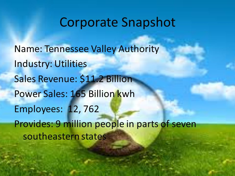 Corporate Snapshot Name: Tennessee Valley Authority Industry: Utilities Sales Revenue: $11.2 Billion Power Sales: 165 Billion kwh Employees: 12, 762 P